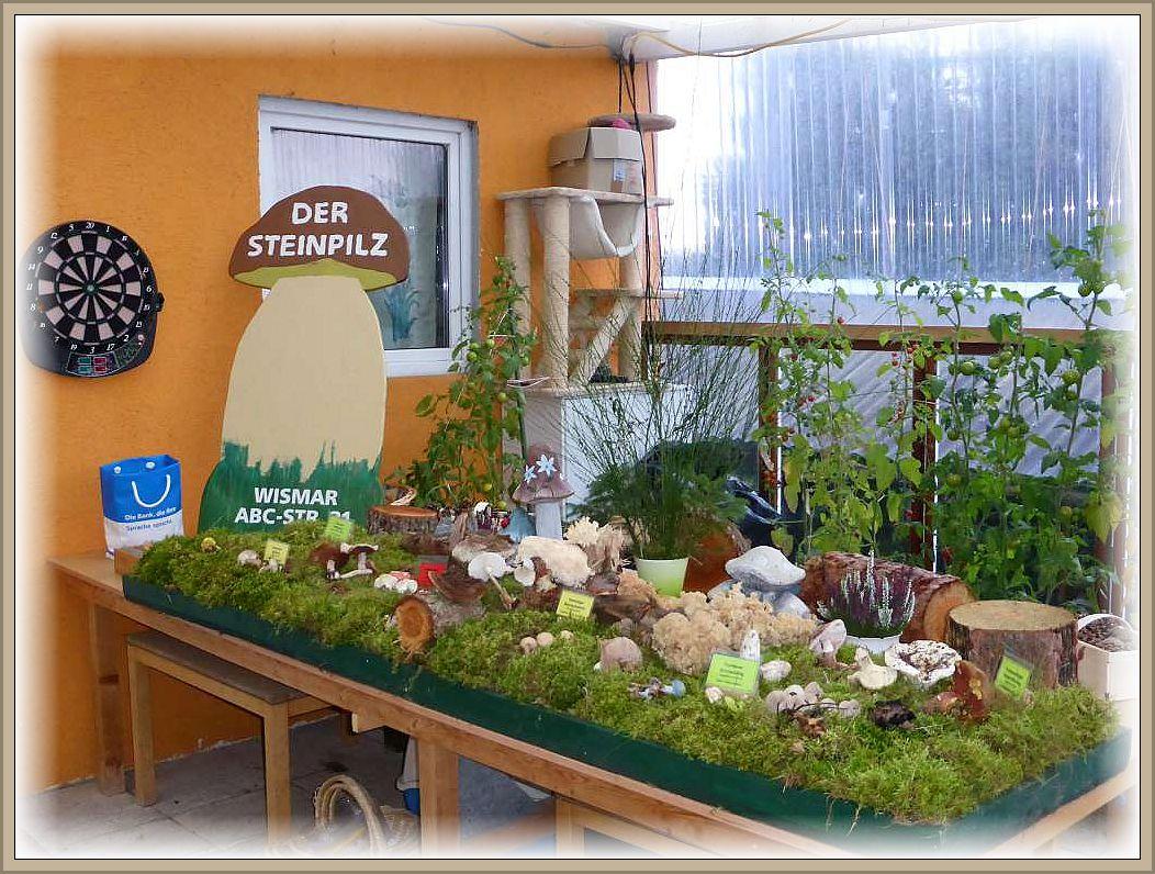Eine kleine Pilzausstellung war im Außenbereich aufgebaut.