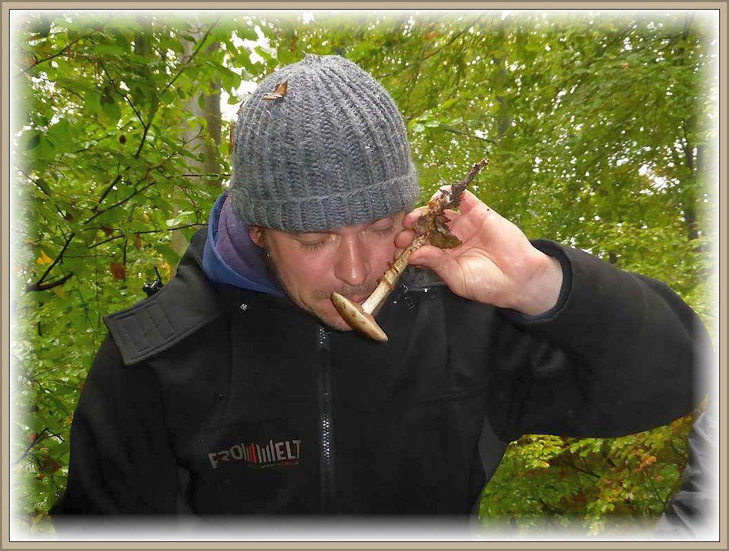 Gerüche spielen bei der genaueren Pilzbestimmung oft eine entscheidende Rolle.