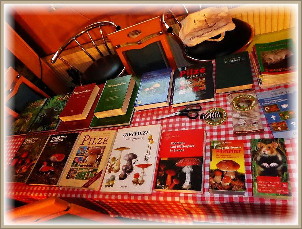 natürlich auch reichlich Bestimmungsliteratur, die jeder neben seinen mitgebrachten Büchern nutzen konnte.