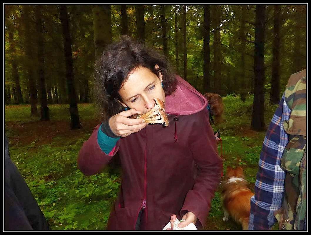 Bei der Pilzbestimmung spielen auch Gerüche oft eine wichtige Rolle. Der Dunkle Hallimsch riecht nach Camenbert. Für ungeübte Pilzriecher überwiegt nunächst der Pilzgeruch. Erst mit einige Übung und wiederholten Geruchstest sind oft die verschiedenen Nuancen der verschiedenen Pilzgerüche wahrzunehmen.