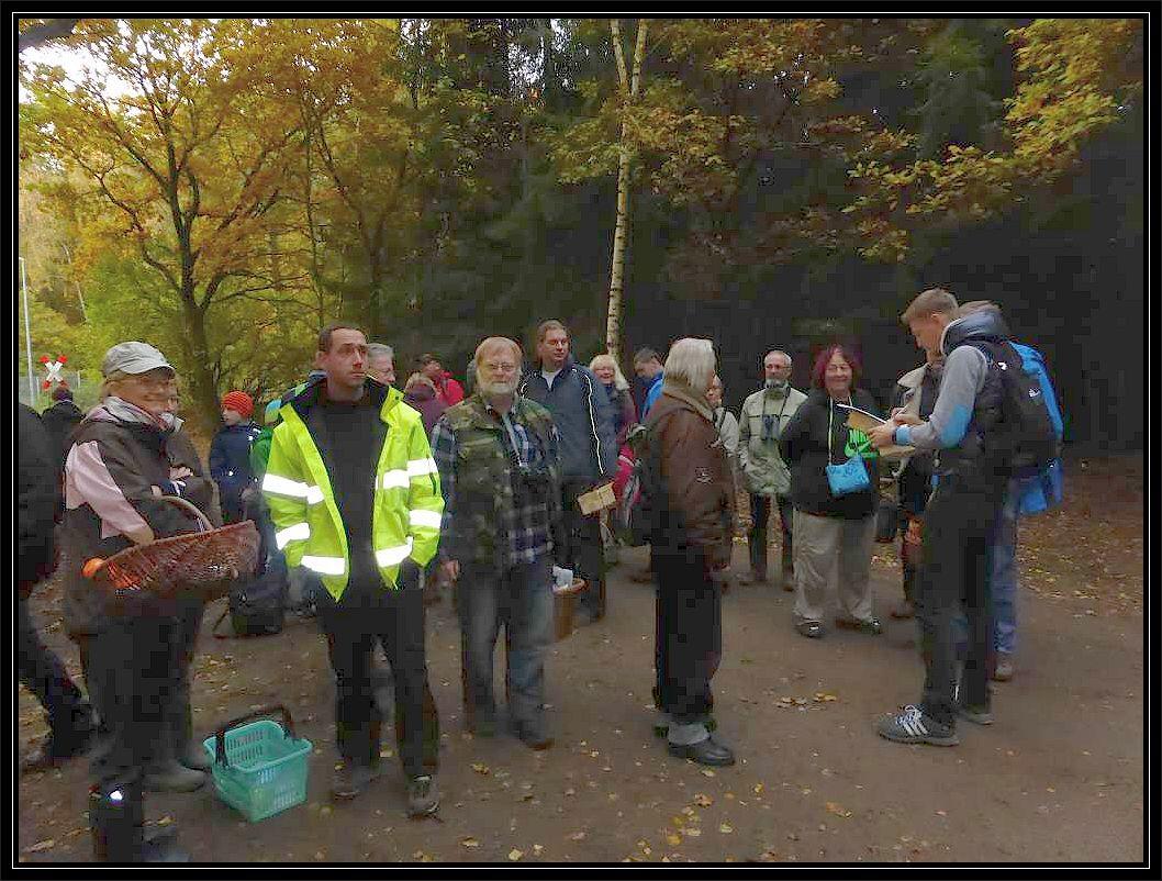 Treff im Börzower Wald mit vielen weiteren Pilzfreunden.