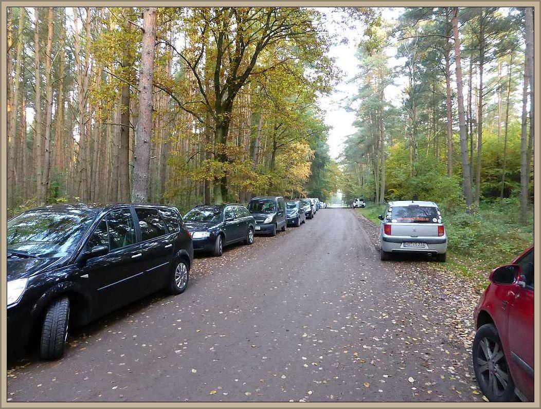 So viele Autos standen wohl selten am Waldweg an der Bahnschranke zwischen Grevesmühlen und Börzow. Viele Menschen nutzte auch angesichts des schönen Wetters das Angebot mit dem Fachmann zu einer spätherbstlichen Pilzwanderung aufzubrechen.