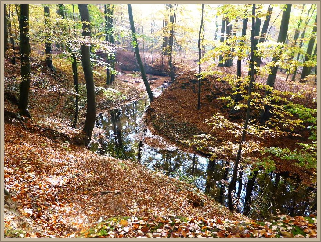 Das Beketal bei Gnemern. Es war Ziel unserer heutigen Vereinsexkursion. Es steht unter Naturschutz, ist dadurch weitgehend naturbelassen und landschaftliche Perle Mecklenburgs.