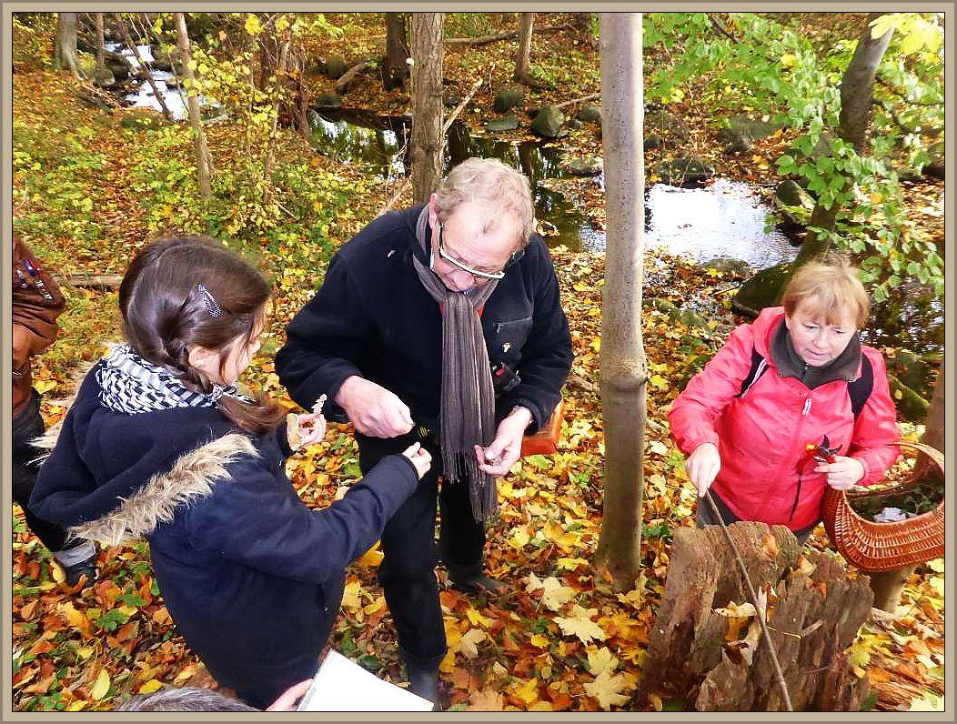 Pilzberater Klaus Warning (Mitte) gibt einem wissbegierigen Mädchen Auskunft. Rechts Irena Dombrowa, auch sie ist Pilzsachverständig und steht gerne mit Rat und Tat zur Seite.