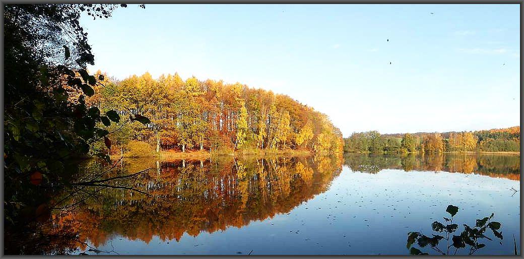 Spätherbstlicher Glanz am Hohlsee bei Brüel am 07. November 2015.