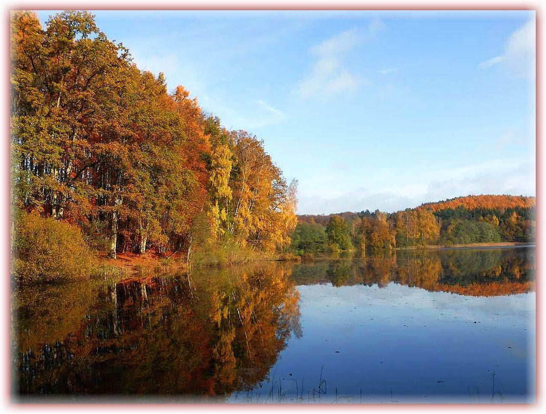 Zeitweise kam bei Windstille und Temperaturen wie im Frühling die Sonne heraus und tauchte die spätherbstliche Landschaft in ein märchenhaftes Licht. Hier der Blick auf den Hohlsee, der zwischen dem Roten See und dem Deichelsee liegt. 07. November 2015.