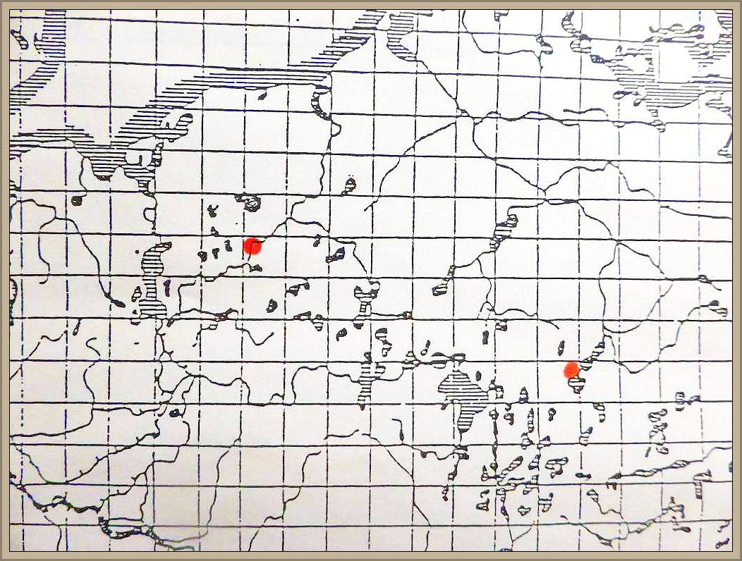 Ciboria conformata (P. Karsten) Sirler - Erlenblatt - Stromabecherchen