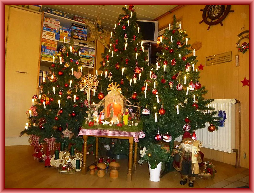 Kleiner Weihnachtswald in unserem Seminarraum in Keez, natürlich auch mit Pilzen.