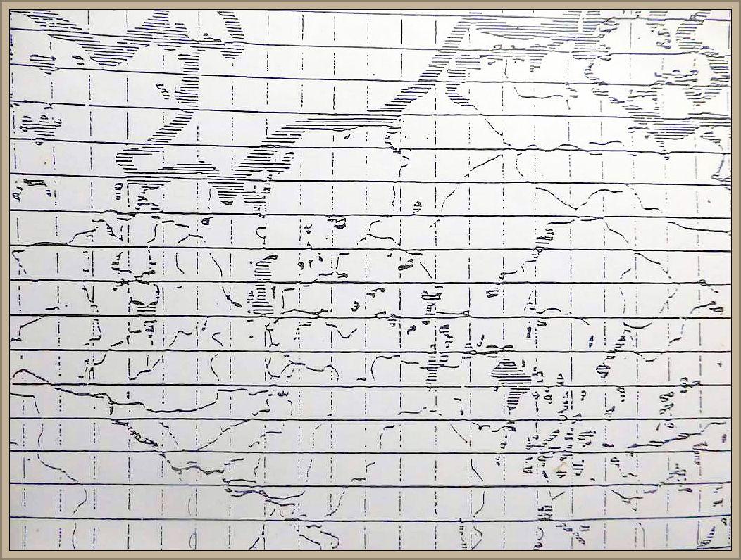Coprinus lagopides Karst. - Breitsporiger Kohlen - Tintling