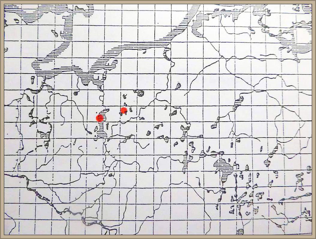 Cortinarius auroturbinatus (Secr.) Lge. - Prächtiger Klumpfuß