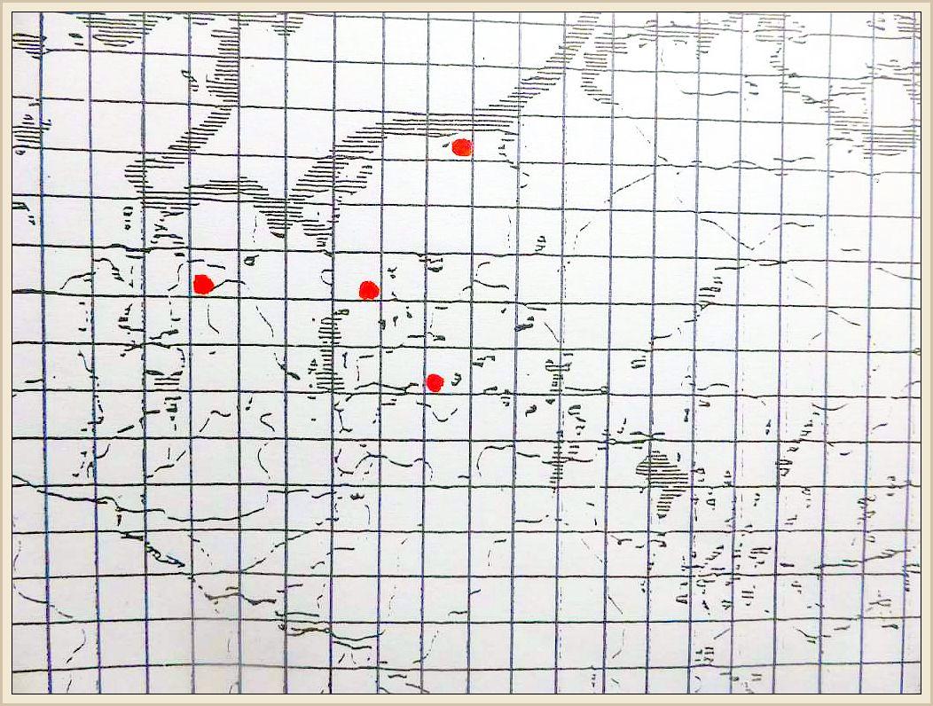 Cortinarius causticus Fr. - Bereifter Schleimfuß