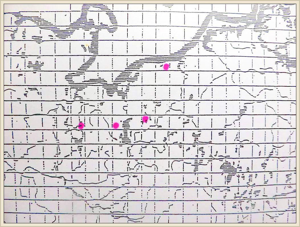 Cortinarius cinnabarinus (Fr.) Fr. - Zinnoberroter Hautkopf