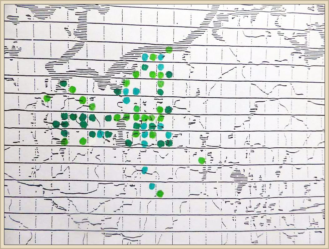 Cortinarius cinnamomeus (L.) Fr. - Zimt - Hautkopf