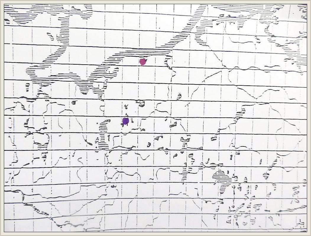 Cortinarius damascenus Fr. - Büscheliger Wasserkopf