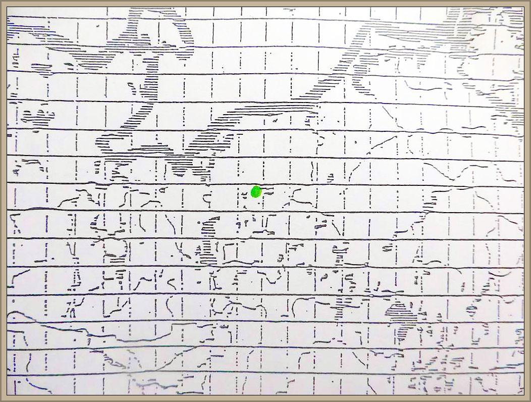 Cortinarius eburneus (Vel.) Hry. - Weißer Schleimfuß