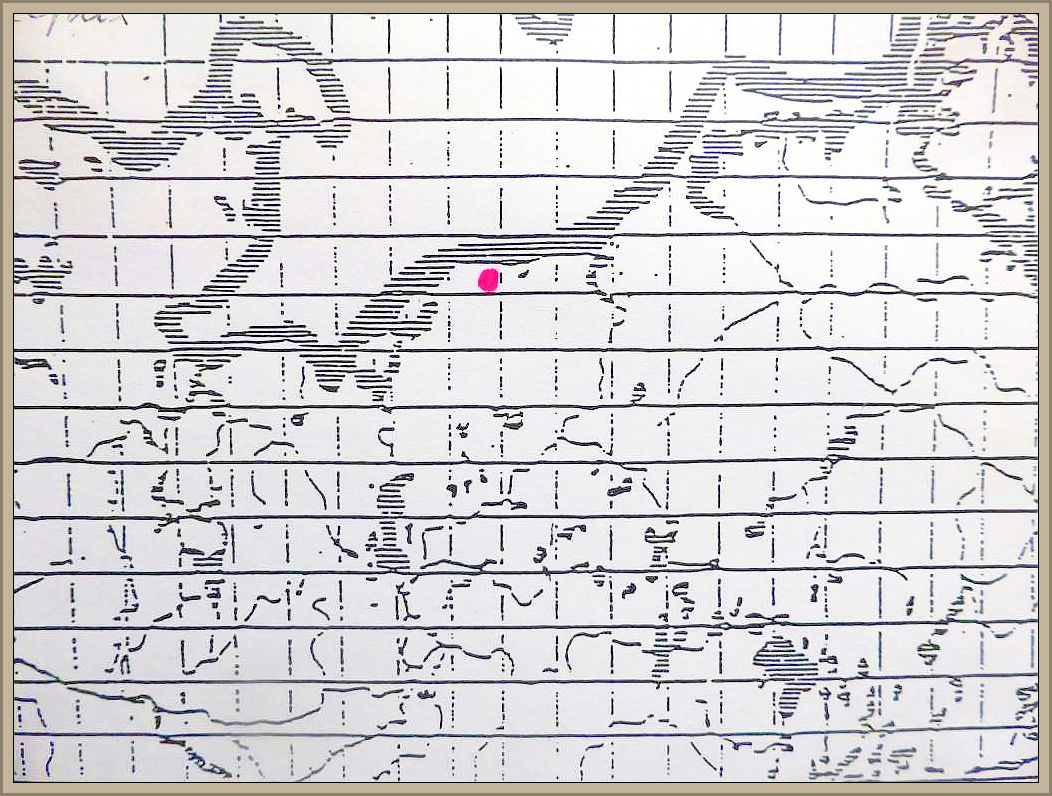 Cortinarius glaucopus (Schaeff.) Fr. - Reihiger Klumpfuß