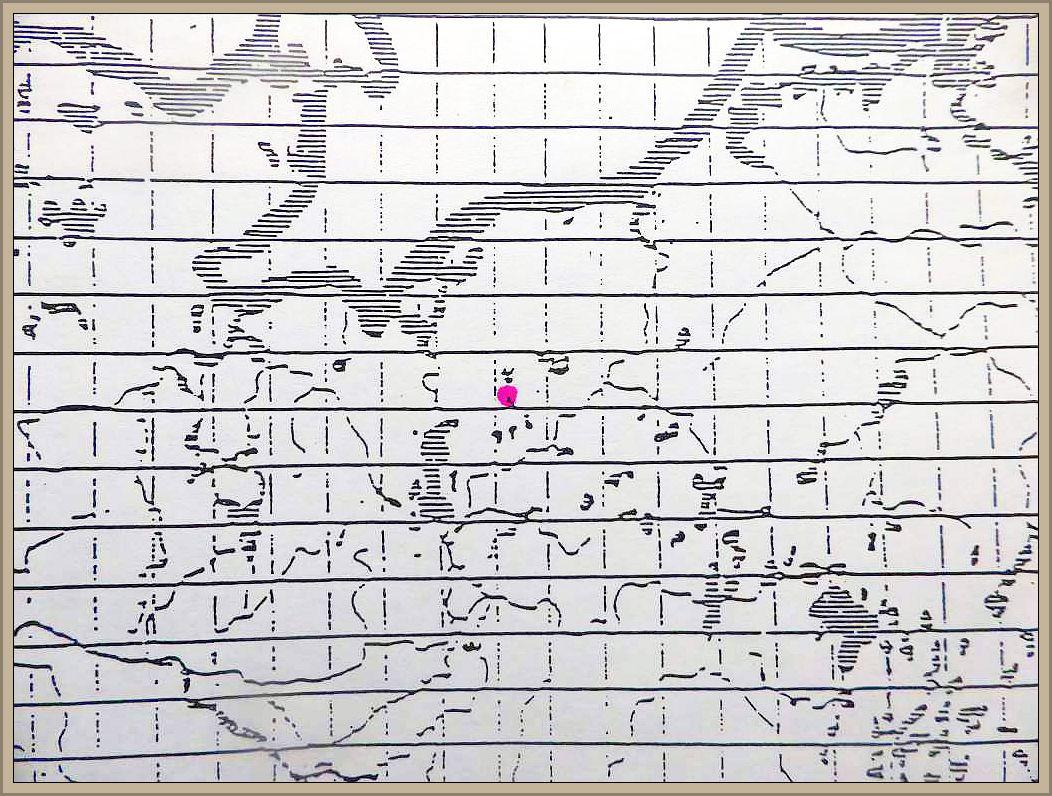 Cortinarius ochroleucus (Schaeff.) Fr. - Trockener Schleimfuß