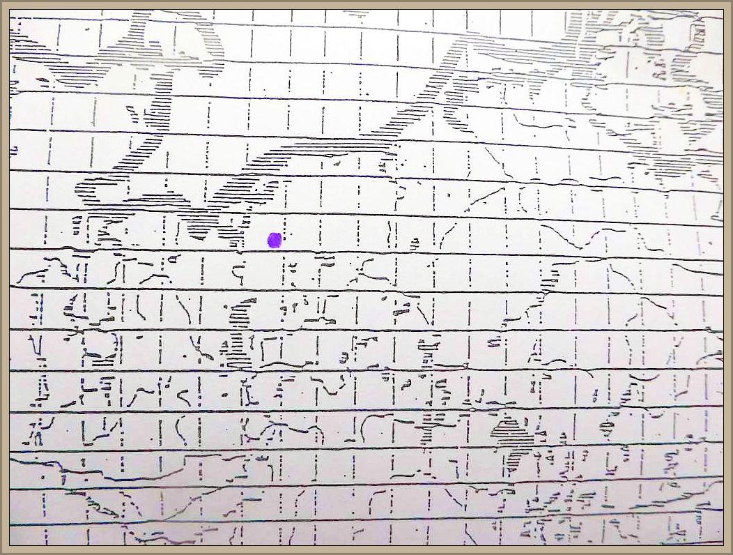 Cortinarius odoratus (Jaguet ex Moser) Moser - Wohlriechender Klumpfuß