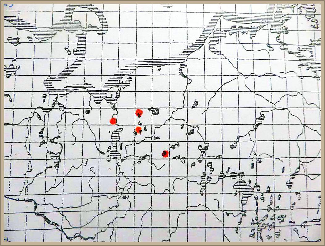 Cortinarius pseudosulphureus R. Hry. ex Orton - Grünlings - Klumpfuß