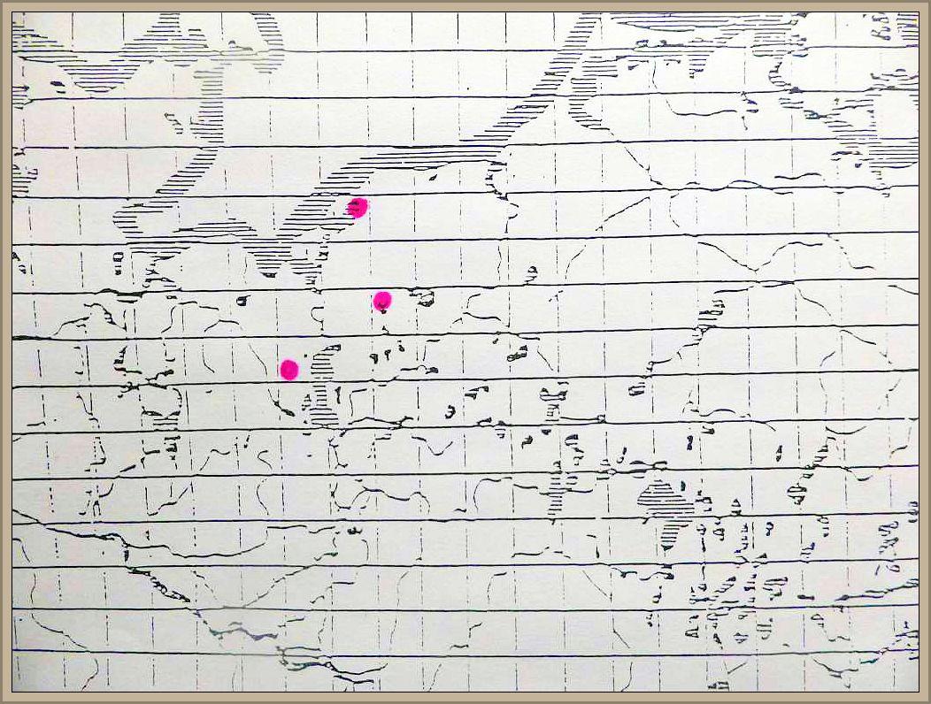 Cortinarius schaefferi Bres. - Hainbuchen - Hautkopf