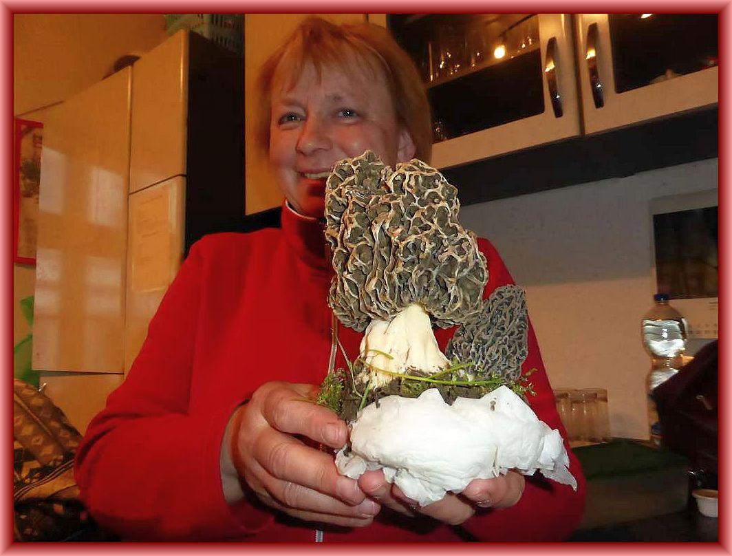 Jung und ideal gewachsen und dazu schon eine ertaunlich größe. Schöner kann man sich Speisemorcheln nicht wünschen. Einfach eine Pracht, die einem nur sekten im Leben vergönnt ist! Irena entdeckte die Pilze zufällig in Sternberg, ohne nach ihnen zu suchen!