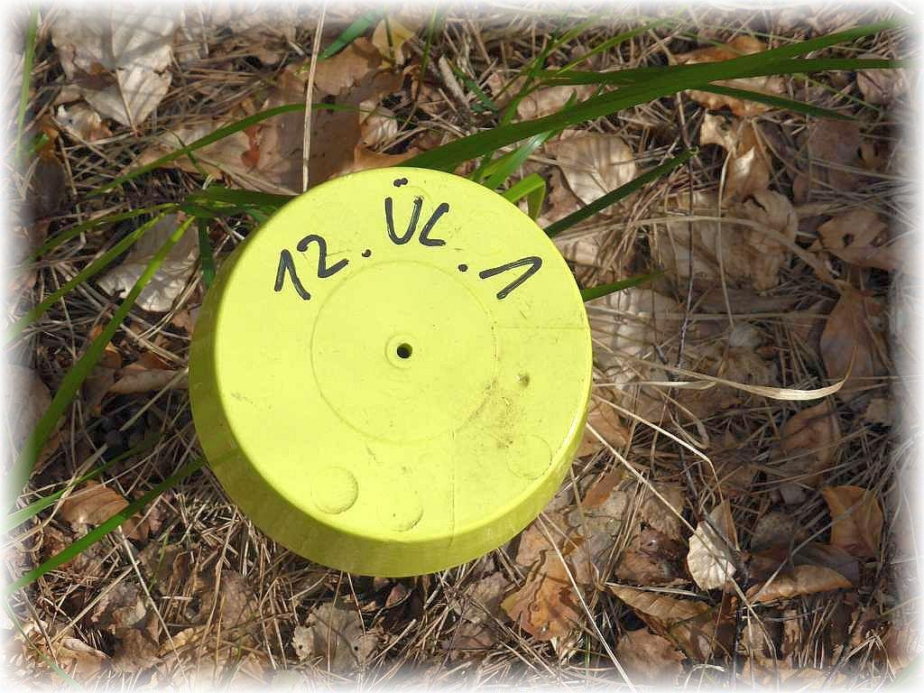 Jeder Festpunkt ist mit einer Nummer ausgestattet und muss mit einem speziell programiertem Navigationsgerät in den jeweiligen Wäldern angepeilt werden. Untersucht werden müssen Flächen bei Prora, in der Ueckermünder Heide und im Kaarzer Holz.