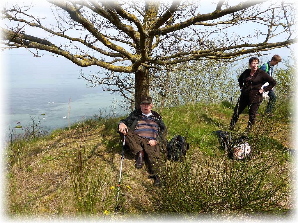 Ein müder Pilzwandersmann macht es sich unter einem Küstenbaum gemütlich. Mann ist ja nicht mehr der Jüngste!