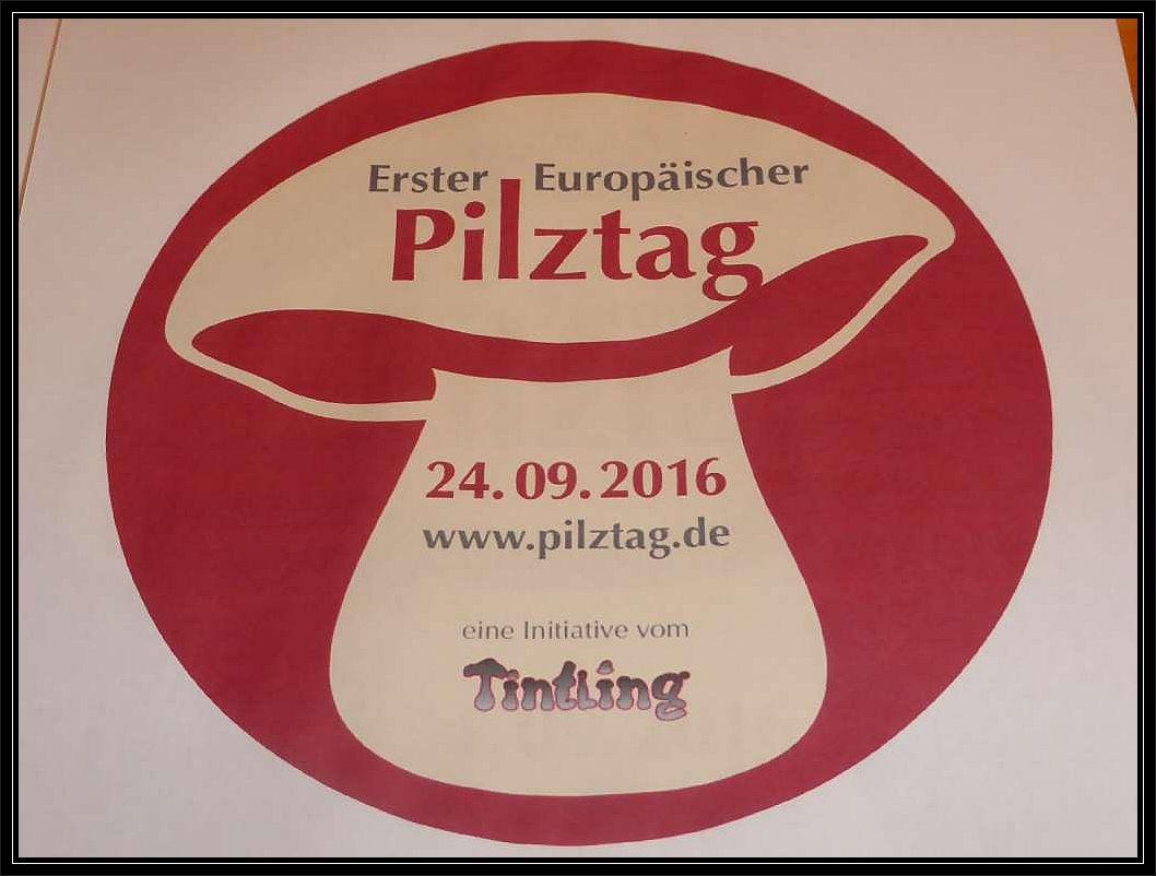 Übrigens konnte der Zeitpunkt unserer Großpilzausstellung kaum besser gewählt sein, denn in diesem Jahr findet auf Initiative von Karin Montag, der Herausgeberin der Pilzzeitung Der Tintling der erste Europäische Pilztag statt!