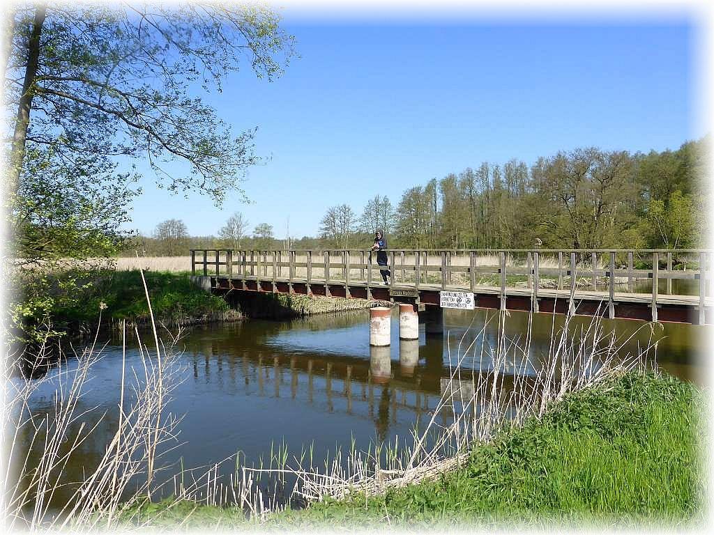 Wir überquerten diese Warnowbrücke und wanderten am gegenüber liegenden Ufer zurück zum Ausgangspunkt des Warnow - Rundwanderweges.
