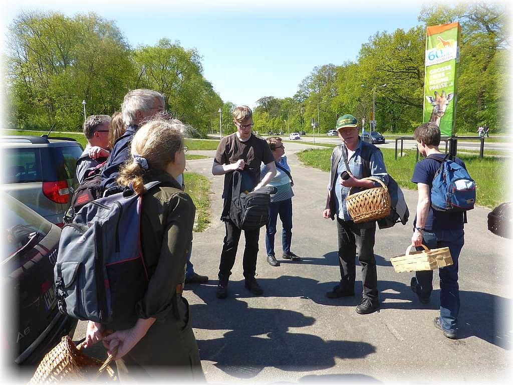 Ankunft in Schwerin. Wir suchten das Umfeld des Faulen Sees als Ziel aus. Parkartiges Gelände mit Wiesenflächen, aber auch bewaldeten Bereichen.