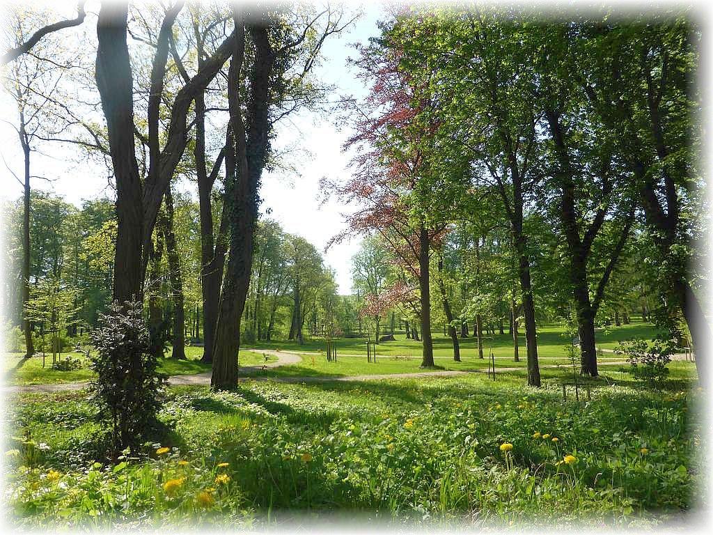 Beginnend an dieser wunderschönen Parkanlage in Raben Steinfeld bei Schwerin wanderten wir ein Stück am Ostufer des Schweriner Sees entlang bis nach Görslow.