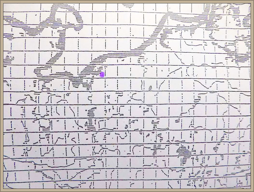 Cortinarius speciosissimus Kühner & Ramagn. - Spitzgebuckelter Rauhkopf