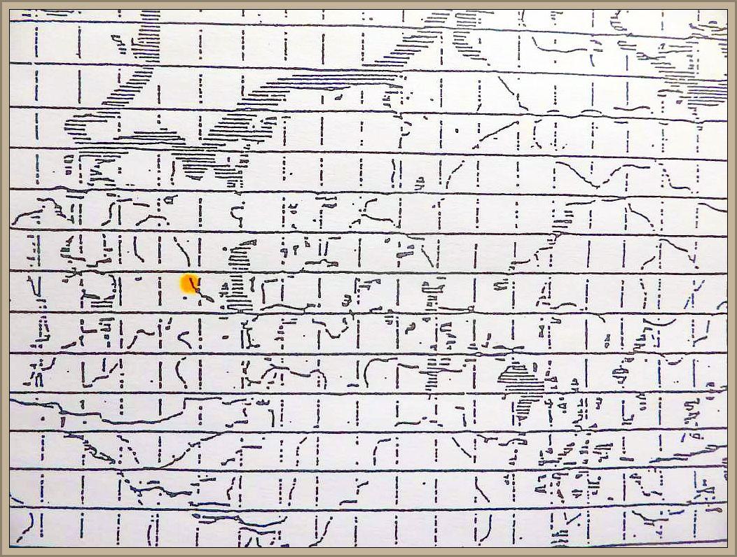 Cortinarius spendens Hry - Schöngelber Klumpfuß
