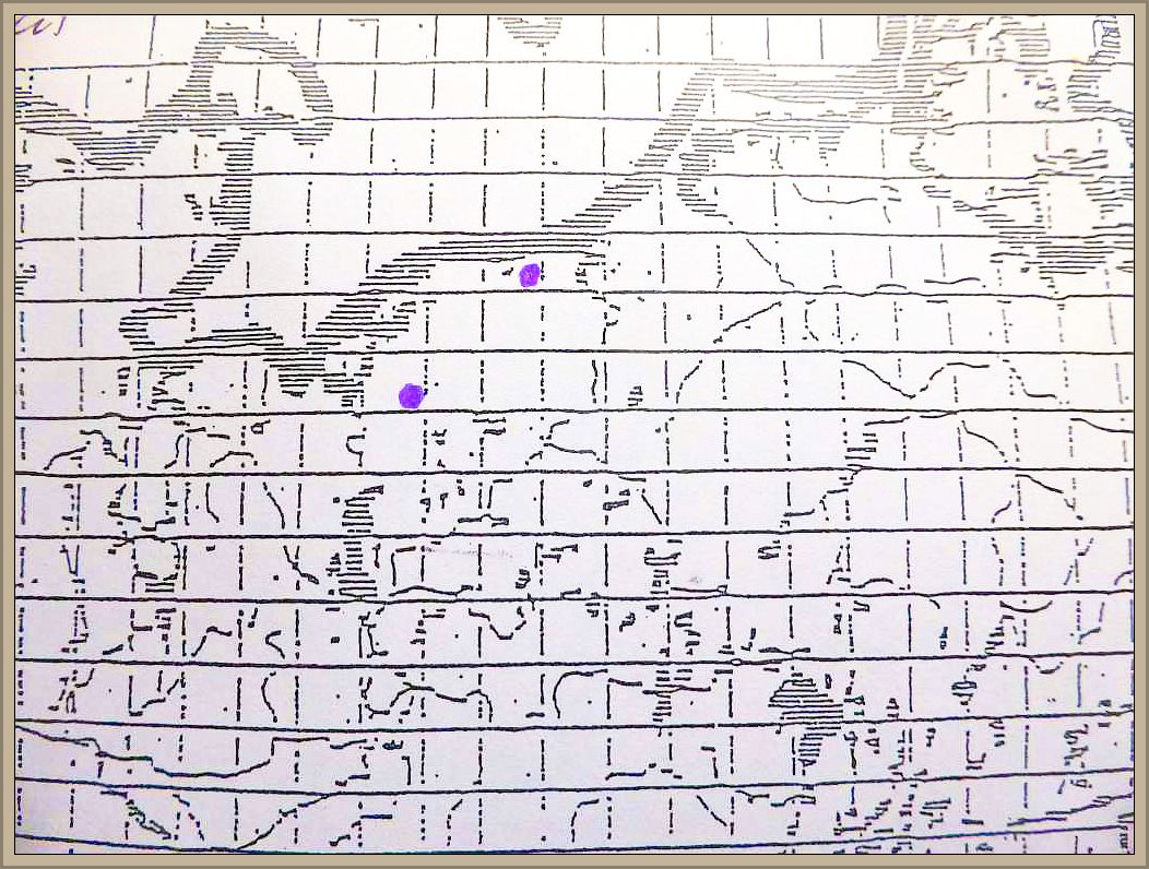 Cortinarius talus Fr. - Falbblättriger Klumpfuß
