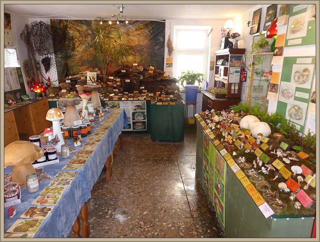 Auch auf meinen Ausstellungsflächen sieht es momentan besonders bunt und vielfältig aus, ähnlich wie in der Hochsaison. Aktuell sind es 125 Großpilzarten, die für 2 Euro besichtigt werden können.