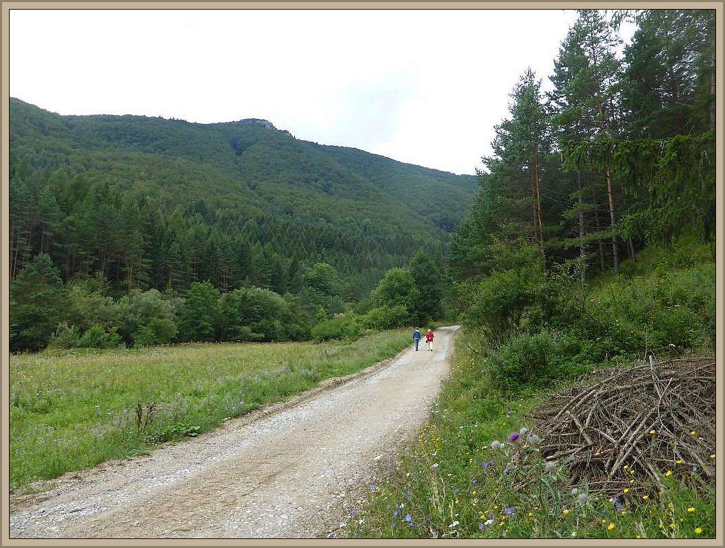 Nach dem Frühstück brachen wir zunächst zu einer kleinen Wanderung durch die reizvolle Berglandschaft auf. Hier soll es noch Bären und Wölfe geben, von denen wir allerdings nichts bemerkten..