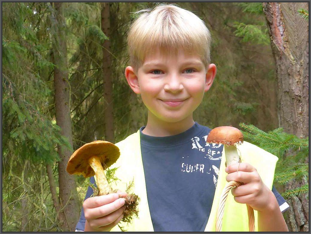 Freude auch beim Pilzsucher - Nachwuchs über einen essbaren Sandpilz und einen ebenfalls schmackhaften Orangeroten Graustiel - Täubling.