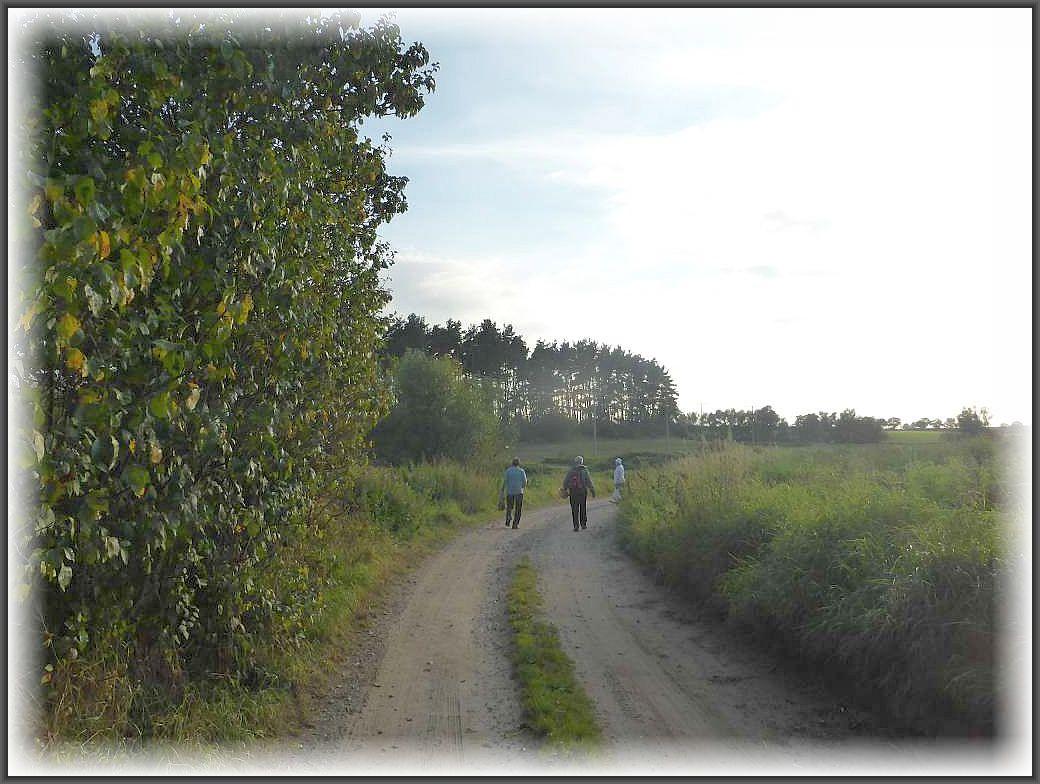 Auf geht es am lauen und sonnigen Sommerabend in Richtung Greese.
