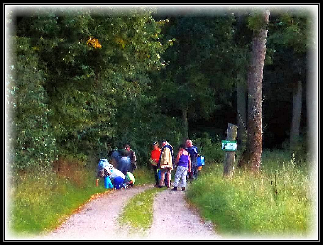 Am Eingang zum Wald konnte das Pilzmesser schon gezückt werden.