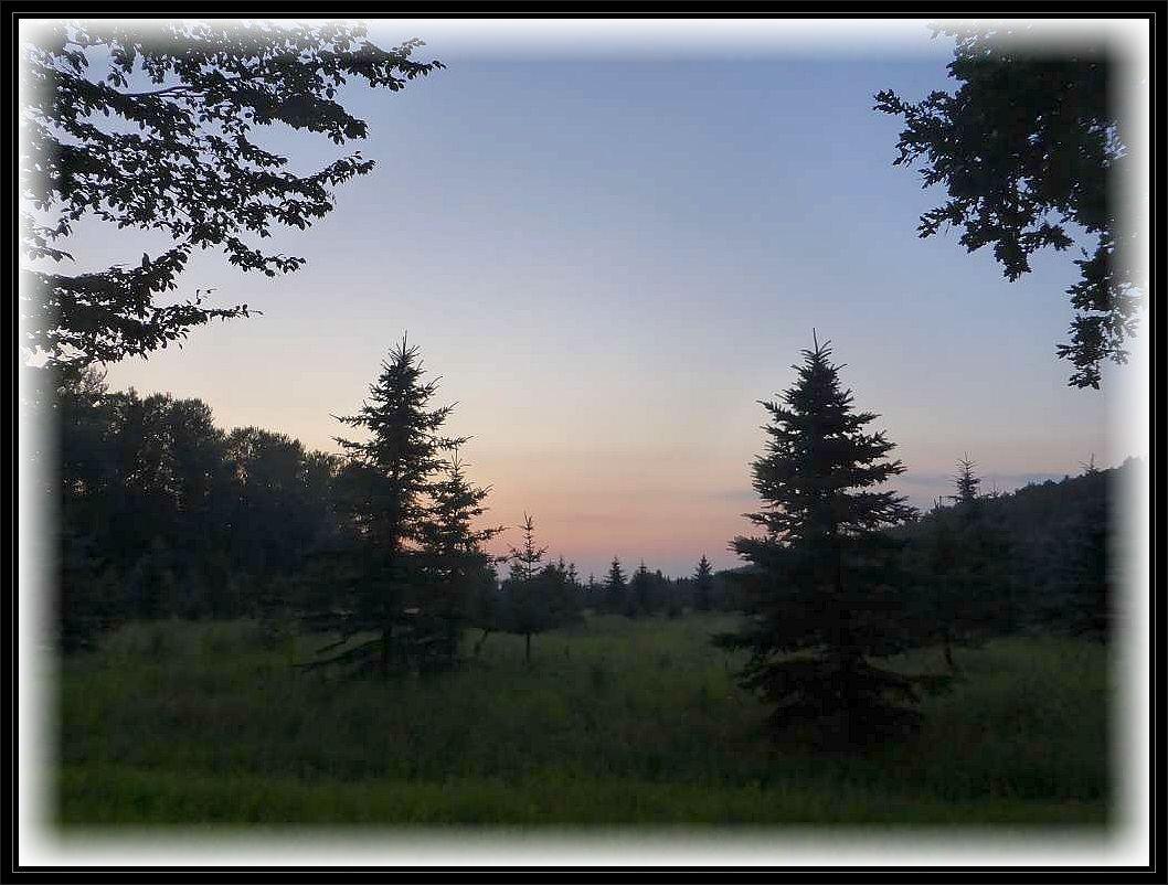 Allmählich schwand dann auch das letzte Licht des Tages und ohne Lampe ging nun garnichts mehr.