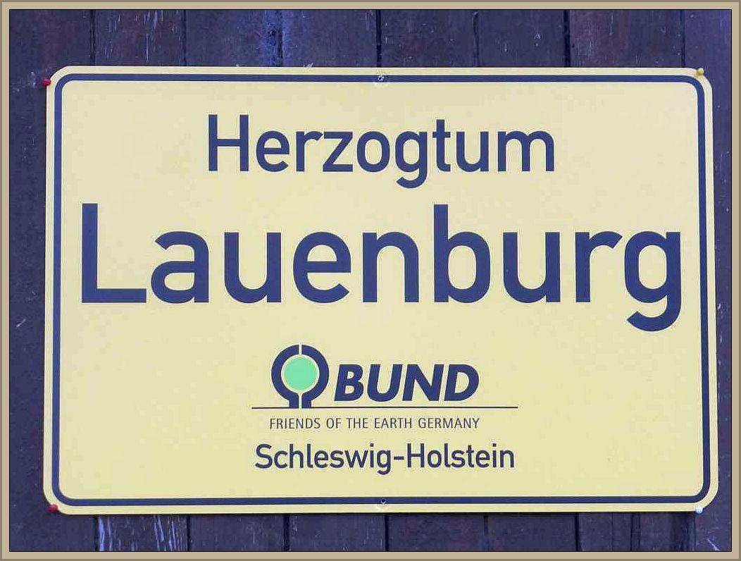 Die Kreisgruppe des BUND im Herzogtum Lauenburg ludt wieder zu Pilzwanderungen im Lübschen Forst Ritzerau ein.