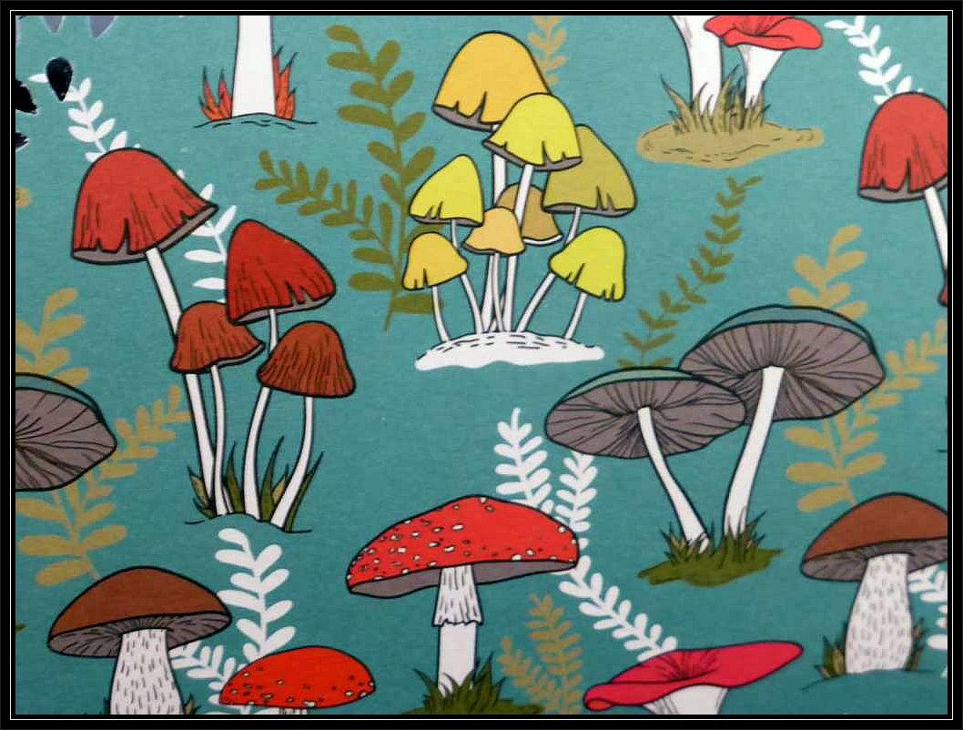 Eine kunterbunte Pilzwelt präsentieren wir traditionell am letzten Septenberwochenende. In diesem Jahr fiel sie wegen der Trockenheit etwas bescheidener aus.