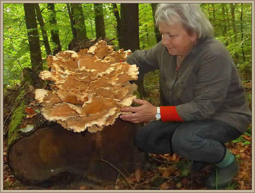 Irena Dombrowa freut sich über dieses prachtvolle Ausstellungsstück, das wir am 03. Oktober im Babster Sack fanden. Ein wahrer Blickfang für unsere Ausstellung.
