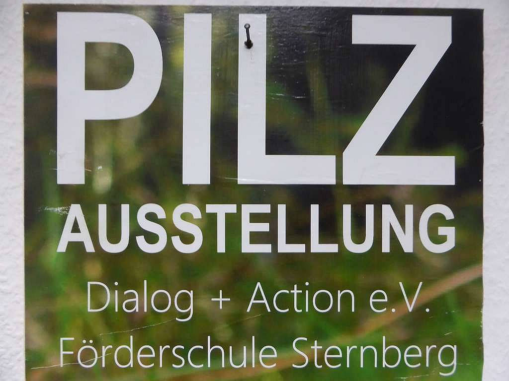 05. - 07. Oktober 2016 - 1. Pilztage in Sternberg.