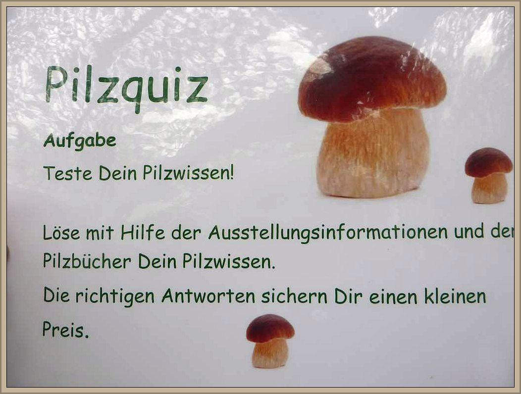bei einem kleinen Quiz kann man sein Pilzwissentesten und mit Glück einen kleinen Preis gewinnen.