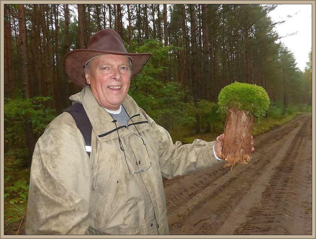 Zum Schluß konnte Pilzfreund Jürgen Horn aus Bargteheide noch einen ganz besonderen Fund präsentieren. Ein Mooshäubling mit allerdings besonders holzigem Stiel.