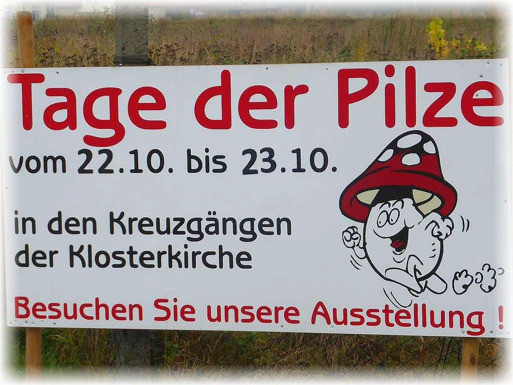 Am Ortseingang zu Rehna waren große Hinweistafeln aufgestellt, die auf die große Pilzschau aufmerksam machten.
