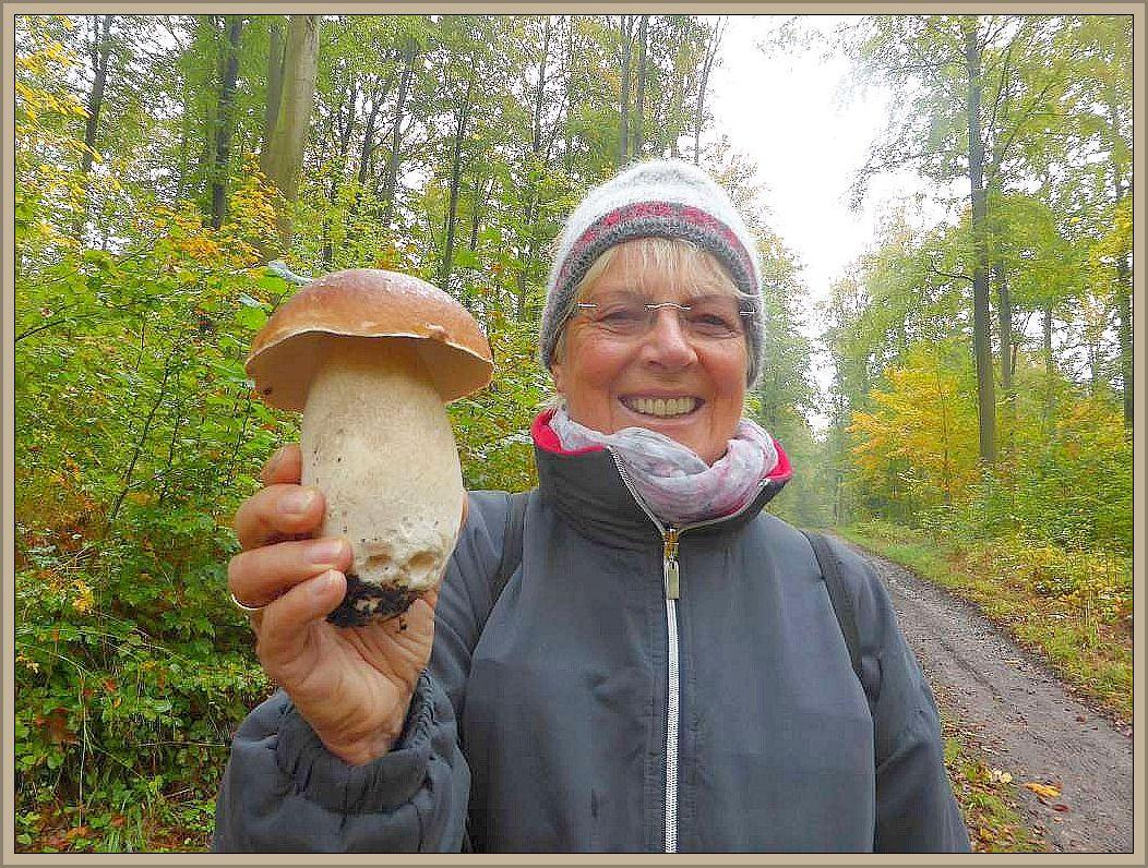 Unverhofftes Glück für diese Pilzsucherin aus Lübeck. Aus der Ferne sah sie zwei schöne Fliegenpilze leuchten und mitten zwischen ihnen ein Prachtkerl von Steinpilz (Boletus edulis) wie man sich ihn schöner kaum wünschen kann. Der knackige ung Kerngesunde Bursch dürfte gut und gerne 500g auf die Wage gebracht haben. Das ist schon eine kleine Pilzmahlzeit.