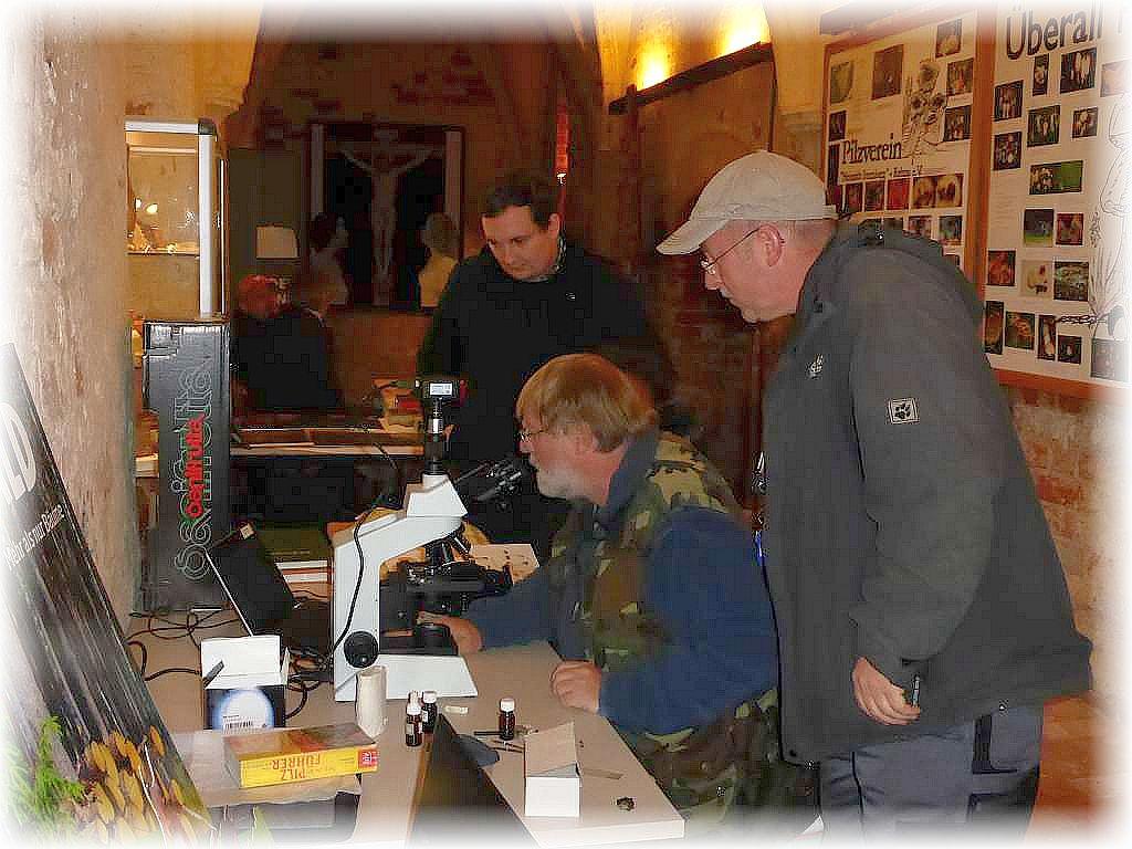 Christopher Engelhardt hatte sein Mikroskop mitgebracht und nebenbei konnten kritische Funde gleich mikroskopisch untersucht werden b.z.w wer Lust hatte, konnte sich Sporen und Zellstrukturen, die bei vielen Arten zur sicheren Bestimmung unerläßlich sind, anschauen.