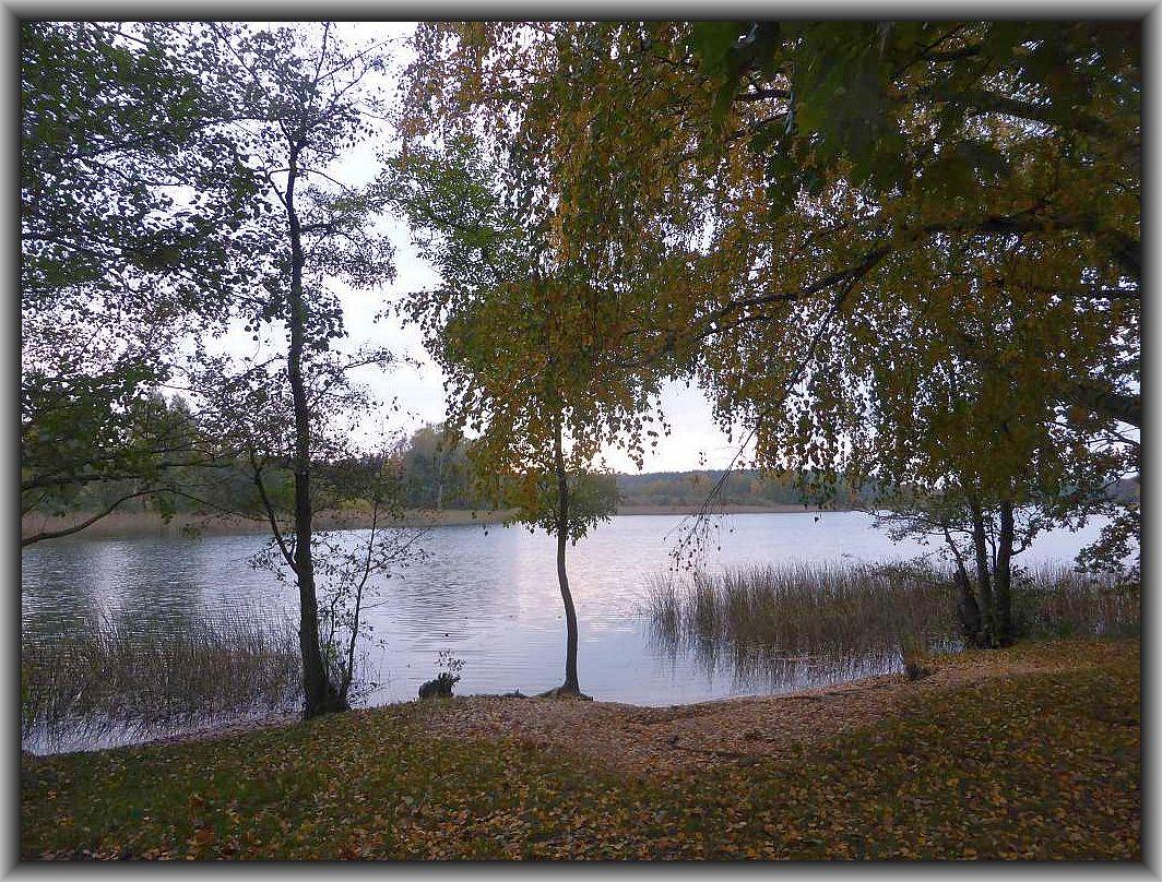 Der Wustrowsee im Landschaftsschutzgebiet Oberte Seen bei Sternberg in der Abenddämmerung.